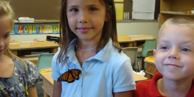 Butterfly - Madelyn